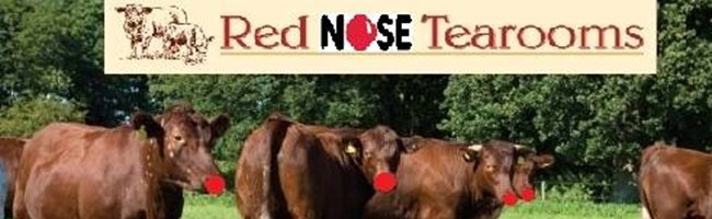 Red Nosed Red Polls